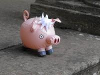 свиной грипп (A/H1N1)
